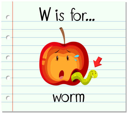 spelling: Flashcard alphabet W is for worm illustration