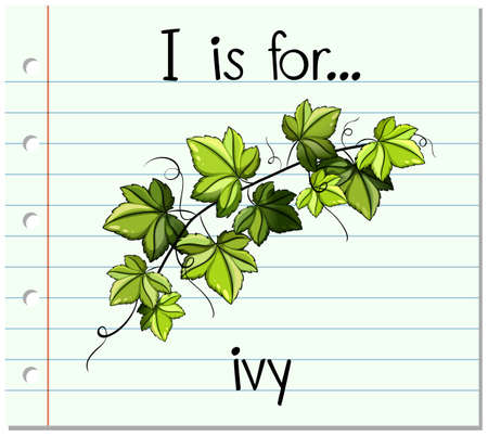 i kids: Flashcard alphabet I is for ivy illustration