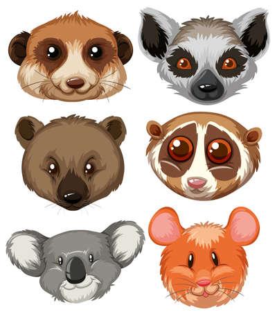 Different type of animal heads illustration