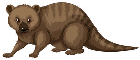 fur: Wild animal with brown fur illustration