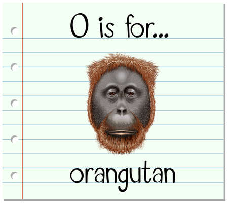 flash card: Flashcard letter O is for orangutan illustration