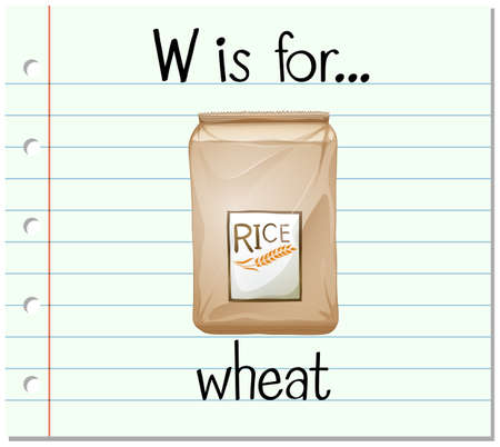 wheat illustration: Flashcard letter W is for wheat illustration Illustration