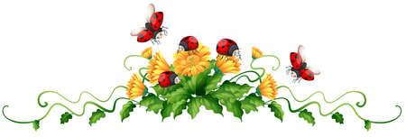 Lieveheersbeestjes en gele bloemen illustratie