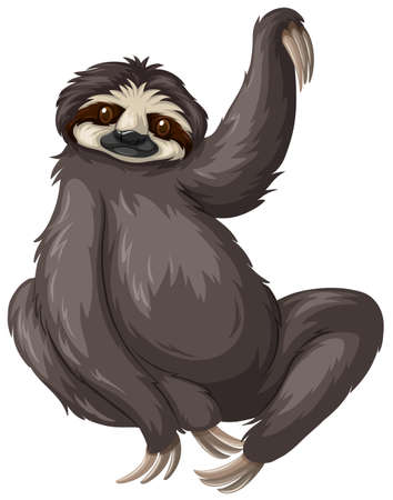 sloth: Sloth with black fur illustration