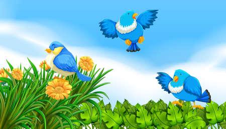 Les oiseaux qui volent dans l'illustration de jardin
