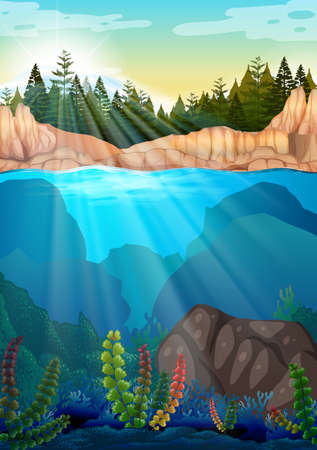 stream: Scene with pine trees and underwater illustration