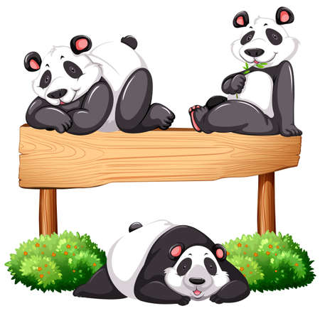 wooden board: Three pandas and wooden sign illustration