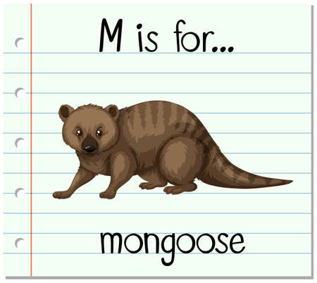 mongoose: Flashcard letter M is for mongoose illustration