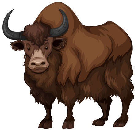 Buffalo with brown fur illustration