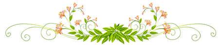 la conception des plantes avec des feuilles et des fleurs illustration