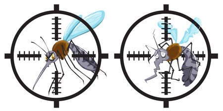 disease carrier: Mosquitoes being in focus illustration Illustration