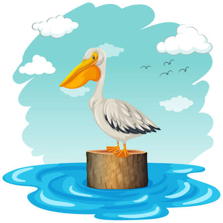 log: Pelican standing on log illustration