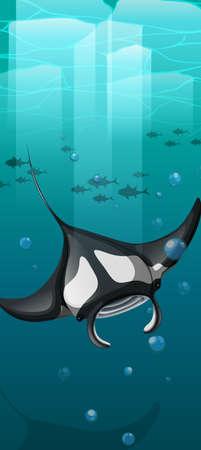 manta: Manta ray swimming under the ocean illustration