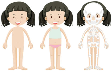 body parts: Girl and body parts illustration