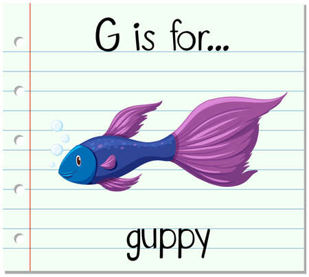 guppy: Flashcard letter G is for guppy illustration Illustration