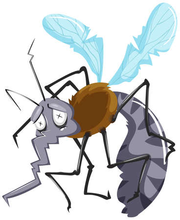 disease carrier: Mosquito in very bad shape illustration