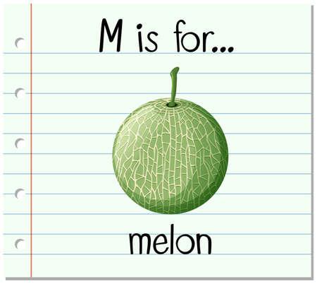 melon: Flashcard letter M is for melon illustration Illustration