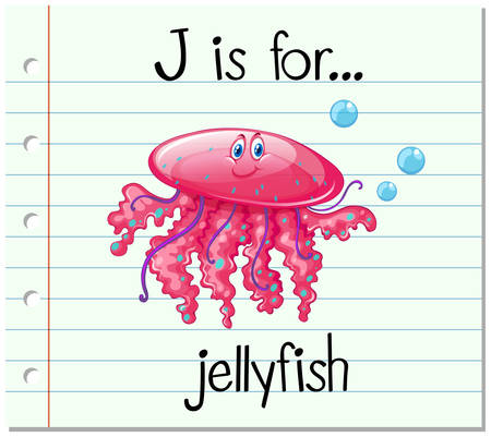 Flashcard letter J is for jellyfish illustration Illustration