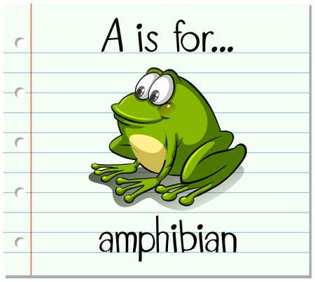 amphibian: Flashcard letter A is for amphibian illustration Illustration
