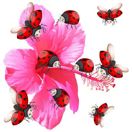 gardening: Ladybugs flying around the flower illustration