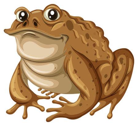 brown skin: Single frog with brown skin illustration
