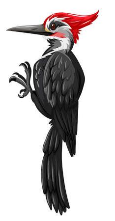 pito negro sobre fondo blanco Ilustración