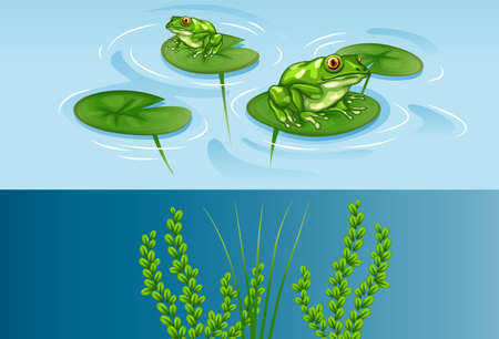 underwater scene: Frogs on water lily and underwater scene illustration