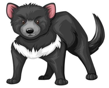 tasmanian: Tasmanian devil with black fur illustration