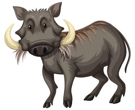 Cerdo salvaje con la ilustración de dientes afilados