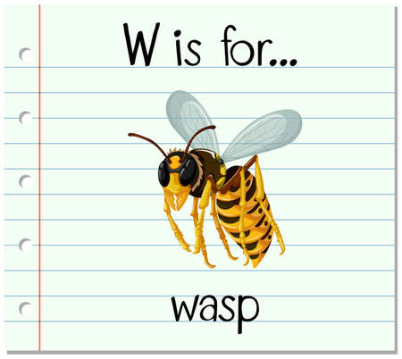 wasp: Flashcard letter W is for wasp illustration