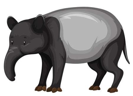endangered: Tapir on white background illustration
