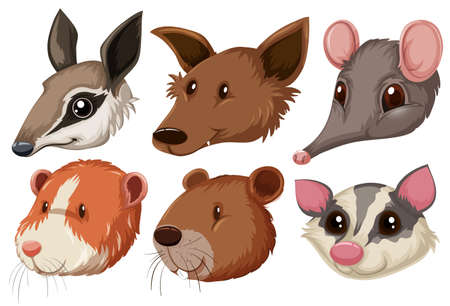 animal heads: Different animal heads on white background illustration