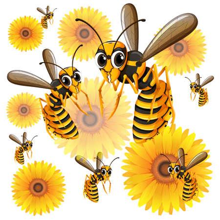 wasps: Wasps flying around yellow flowers illustration Illustration