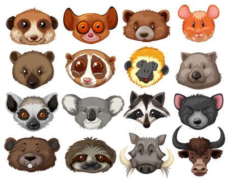 oso perezoso: Conjunto de cabezas de animales ilustración