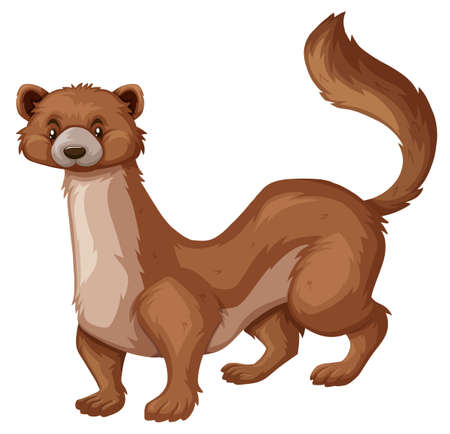 Wild mongoose with brown fur illustration Illustration