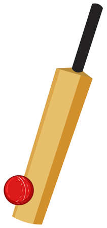Cricket equipment  with bat and ball illustration