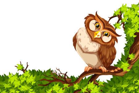 green cute: Cute owl on green branch illustration