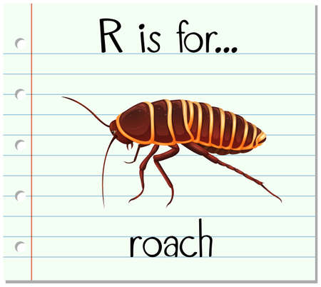 phonetics: Flashcard letter R is for roach illustration