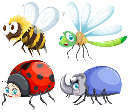 insect: Different kind of insects that fly illustration