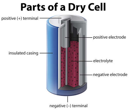 electrolyte: Diagram showing inside of battery illustration Illustration