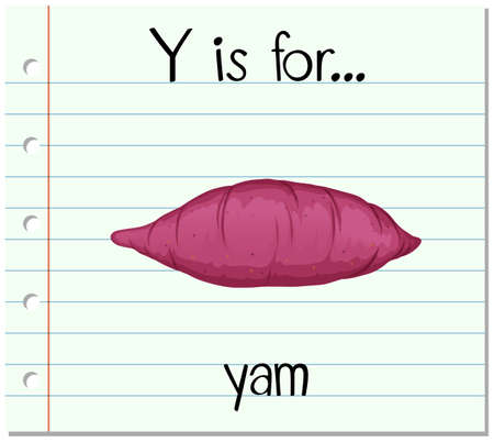 yam: Flashcard letter Y is for yam illustration Illustration