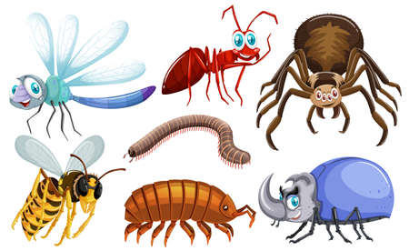 Set of different types of bugs illustration