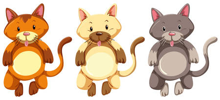 kittens: Three little kittens with silly face illustration