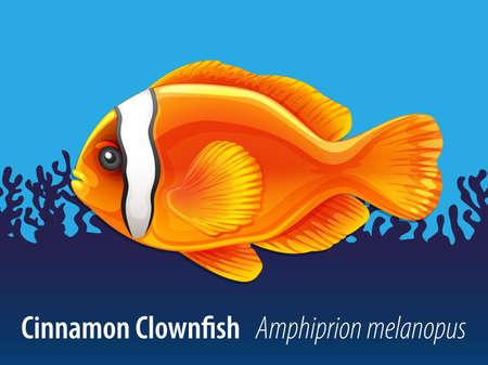 pez payaso: Canela pez payaso nadando bajo el mar Ilustración