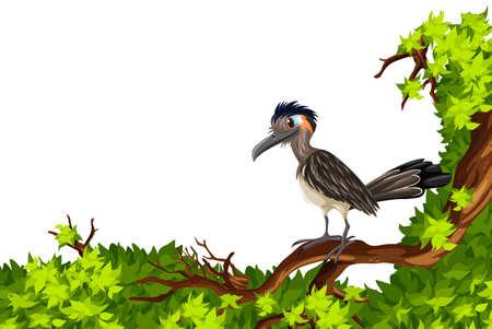 bird illustration: Wild bird standing on branch illustration