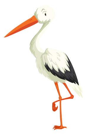standing on one leg: Crane standing on one leg illustration Illustration