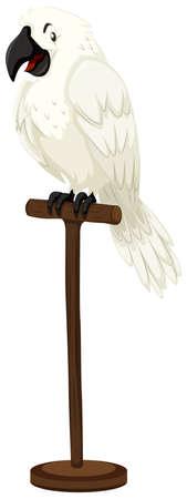 wooden stick: White parrot on wooden stick illustration Illustration