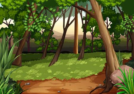 Escena con árboles y campo en la ilustración del bosque