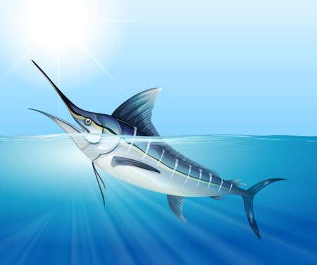 carnivorous fish: Tuna swimming in the sea illustration Illustration