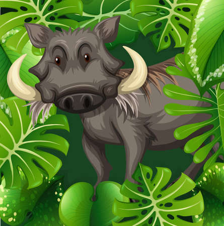 jabali: Cerdo salvaje en la ilustración arbusto